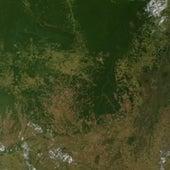 MODIS Image: