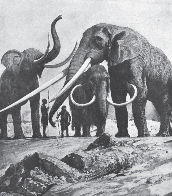 The Gigantic News in Natural History in 1916