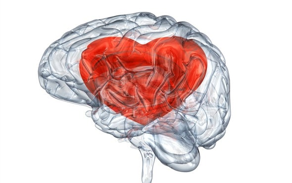 What Goes On in Our Brains When We Are in Love?