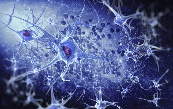 Is Your Nervous System a Democracy or a Dictatorship?