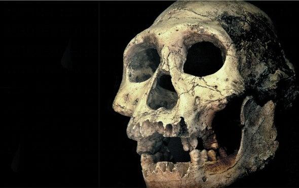 6. Evolution vs. Creationism