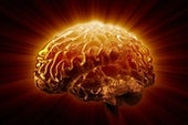 For Alzheimer's Sufferers, Brain Inflammation Ignites a Neuron-Killing