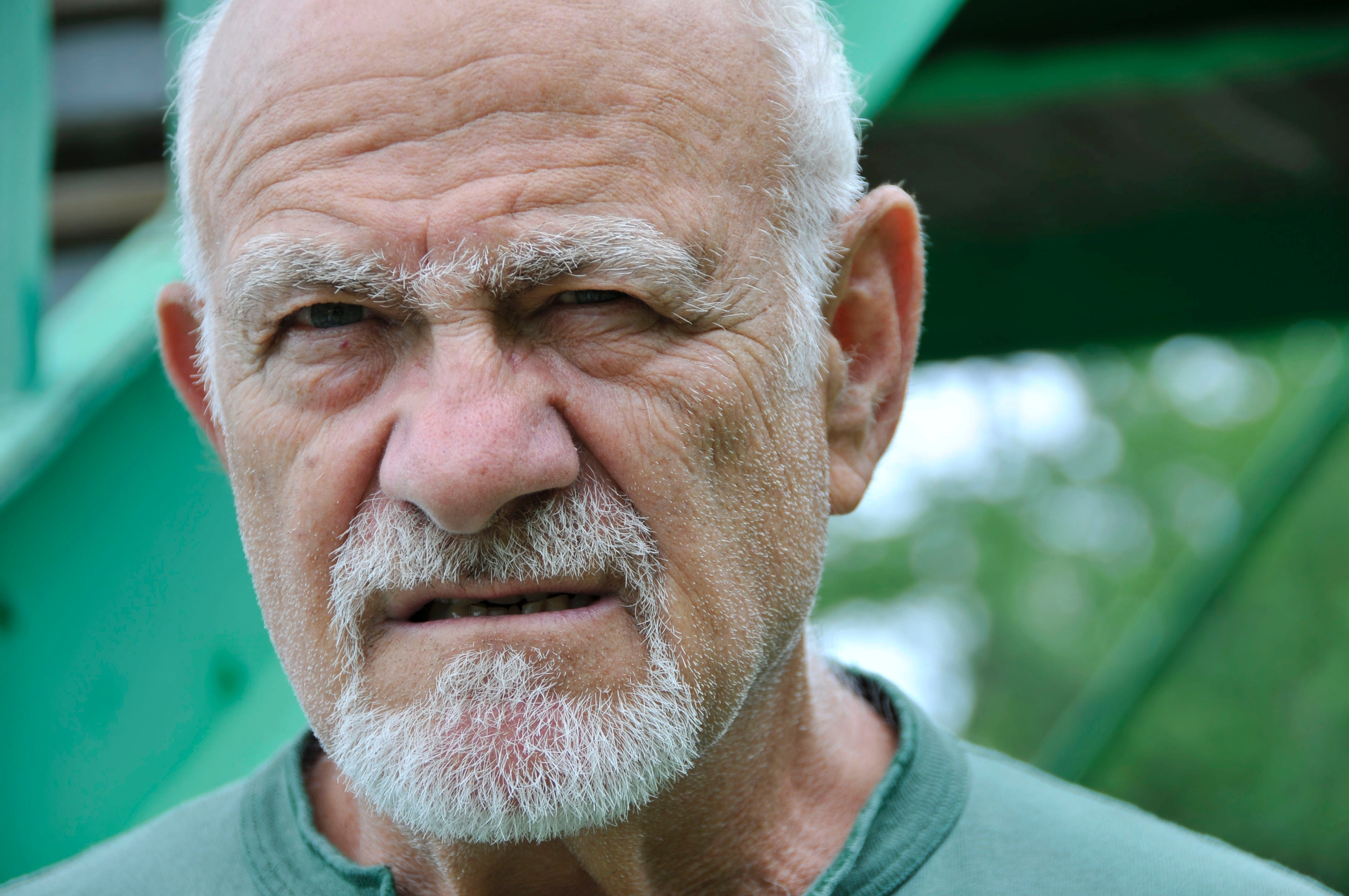 Genes Responsible For Gray Hair Unibrows And Bushy Beards Uncovered
