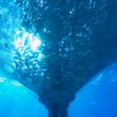 KONA IN OCEAN: