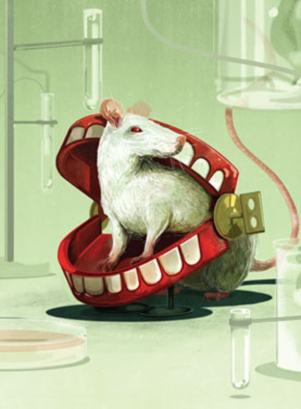 Rats Laugh, but Not Like Humans