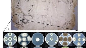 Rescuing Ancient Art from Microbes