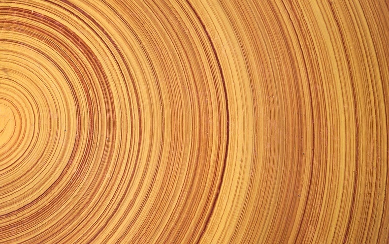 Stronger Than Steel, Able to Stop a Speeding Bullet--It's Super Wood!