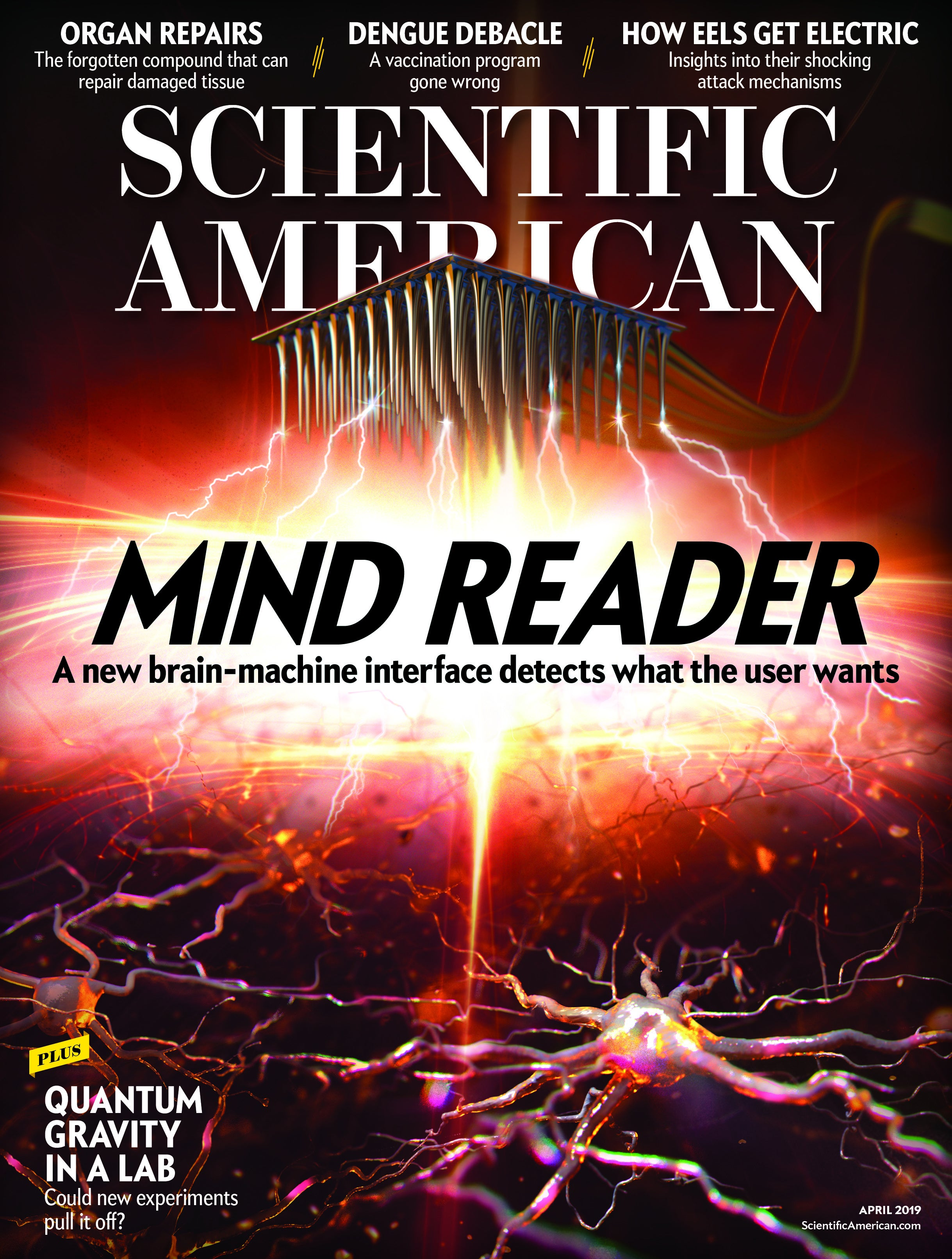 Scientific American Volume 320, Issue 4