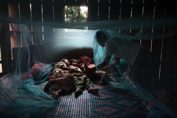 Bed Nets with Insecticide Cut Spread of Mosquito-Borne Diseases, Despite Resistant Bugs
