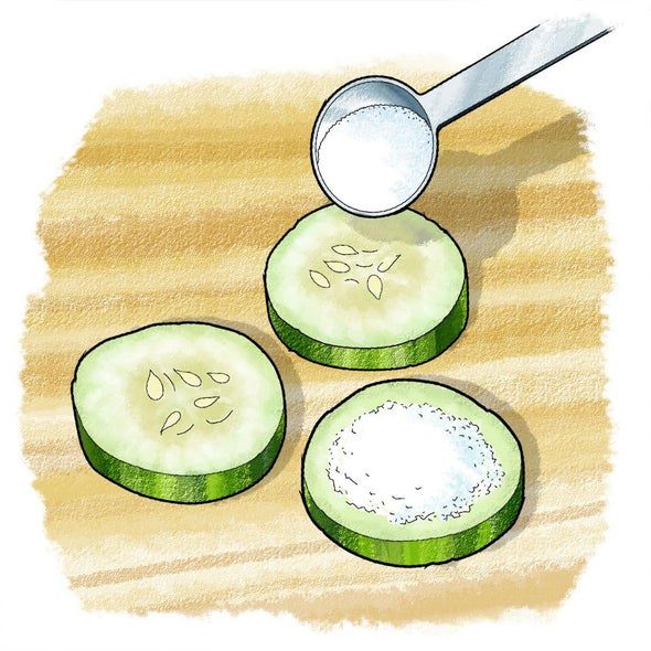 Cucumber Chemistry: Moisture Capture with Desiccants