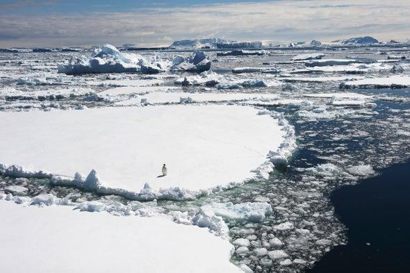 Antarctic Commission Rejects Proposed Marine Sanctuaries