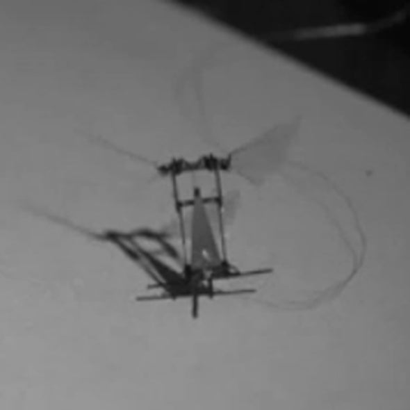 A RoboBee Takes Off [VIDEO]