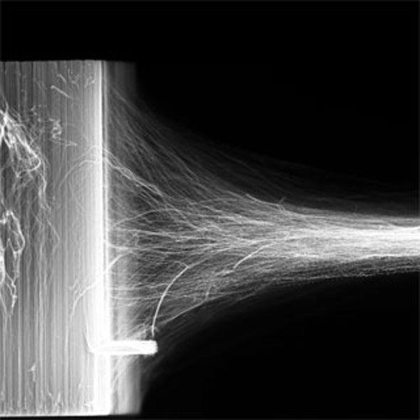 Flex Appeal: Researchers Create Carbon Nanotube Muscles