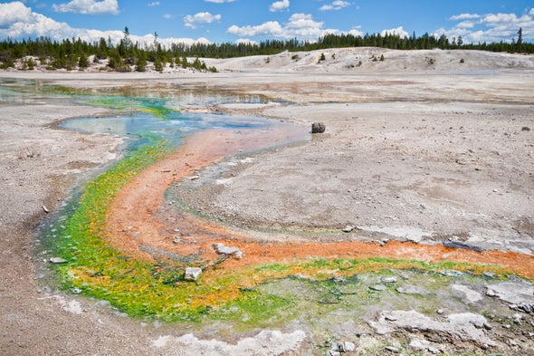 Yellowstone National Park Rattled by Largest Earthquake in 34 years