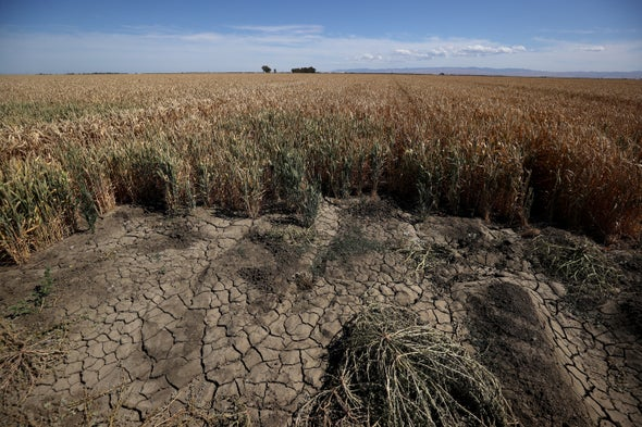 Western Drought Has Lasted Longer Than the Dust Bowl