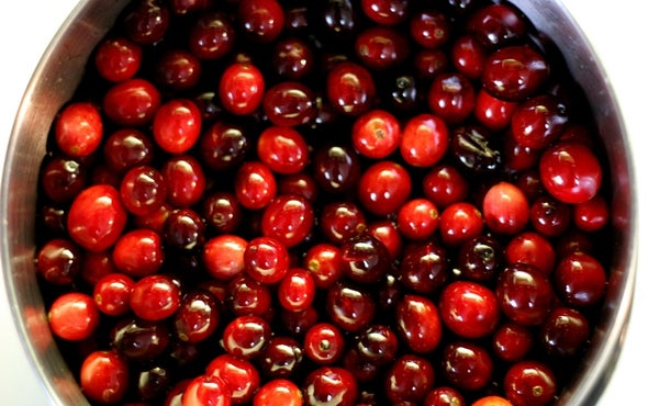 More Evidence Cranberries Don't Prevent Urinary Tract Infections