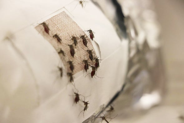 Graphene Garment Blocks Blood-Sucking Skeeters
