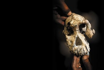 The Face of the Earliest Human Ancestor, Revealed