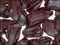 Chocolate Compounds Boost Blood Vessel Function