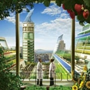 Growing Skyscrapers: The Rise of Vertical Farms