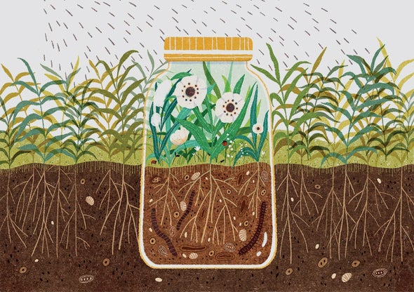 Pesticides Are Killing the Organisms That Keep Our Soils Healthy
