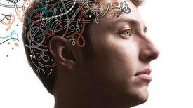 Risky Teen Behavior Is Driven by an Imbalance in Brain Development