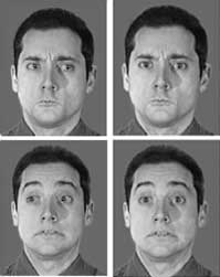 Direction of Another's Gaze Affects How Brain Perceives Emotion