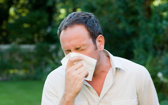 Scientists Wonder If the Common Cold May at Last Be Beatable