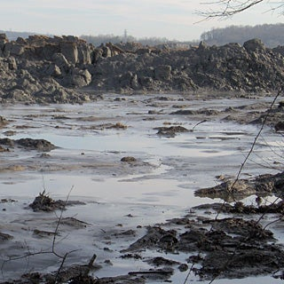 The Lasting Damage of the Tennessee Coal Ash Spill
