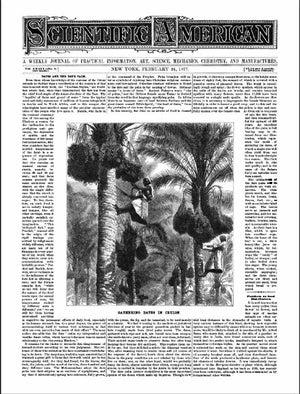 February 24, 1877