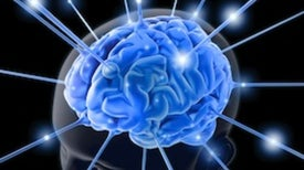 Medicare May Fund Brain Scans for Alzheimer's Research