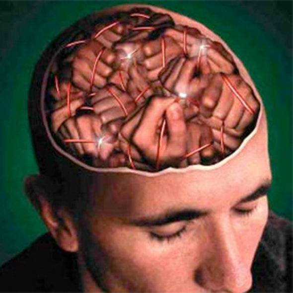Fearless Youth: Prozac Extinguishes Anxiety by Rejuvenating the Brain