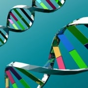 1,000 Genomes Project: Expanding the Map of Human Genetics