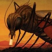 How a Tiny Bacterium Called <em>Wolbachia</em> Could Defeat Dengue