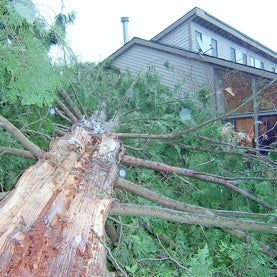 CSI: Mother Nature--Forensic Meteorology a New Growth Industry as Weather-Related Damage Intensifies
