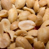 PREGNANT WOMEN SHOULD AVOID PEANUTS BECAUSE THEY UP THE BABY'S ODDS OF DEVELOPING AN ALLERGY TO THEM