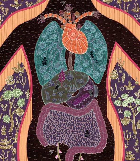 Microbes in the Gut Are Essential to Our Well-Being