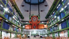 Particles That Flock: Strange Synchronization Behavior at the Large Hadron Collider