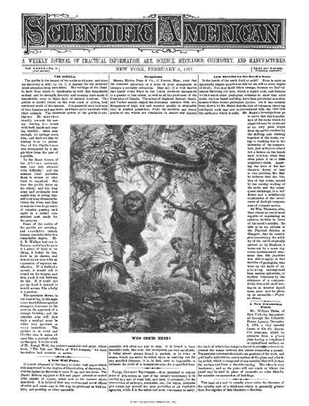 February 03, 1877
