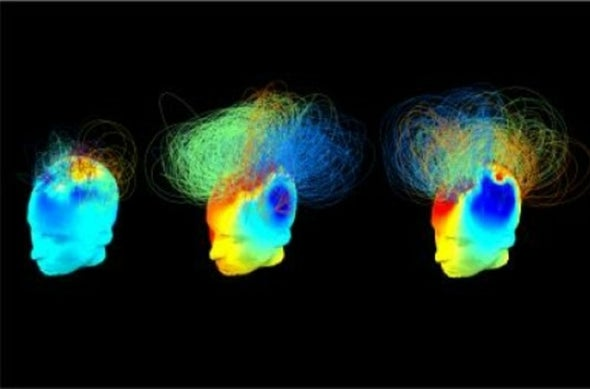 Searching for Signs of Consciousness