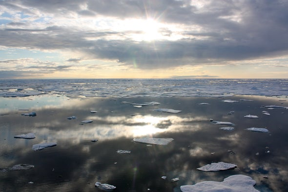 Erosion May Transform the Arctic Food Chain