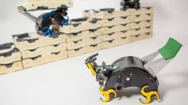 Tiny Robots Mimic Termites' Ability to Build without a Leader