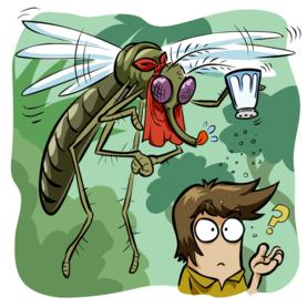 Mosquito Scent-Tracking Discovery Could Lead to Better Repellents