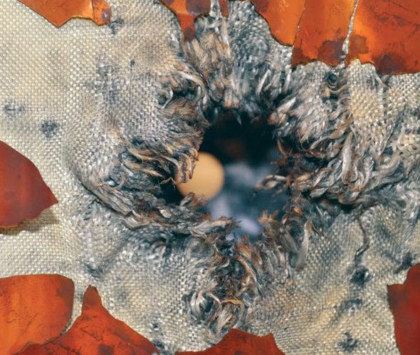 A Space Debris Impact Test