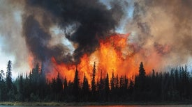 Wildfire Is Transforming Alaska and Amplifying Climate Change