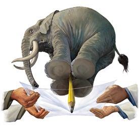 Elephant Illustrates Important Point