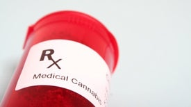 Panel Recommends FDA Approval of Epilepsy Drug Derived from Marijuana