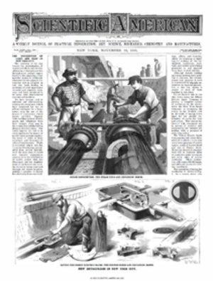 November 19, 1881