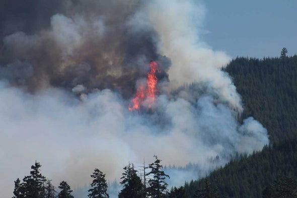 Global Warming Helped Exacerbate Biggest Year Ever for U.S. Wildfires