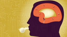 Who Really Gains from Brain Training?